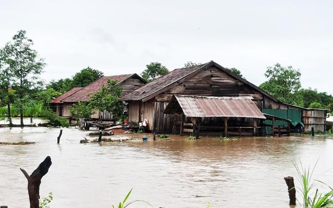 Mưa 1 trận, xóm làng Đắk Lắk chìm trong nước, hàng trăm ngôi nhà bị ngập - Ảnh 7.