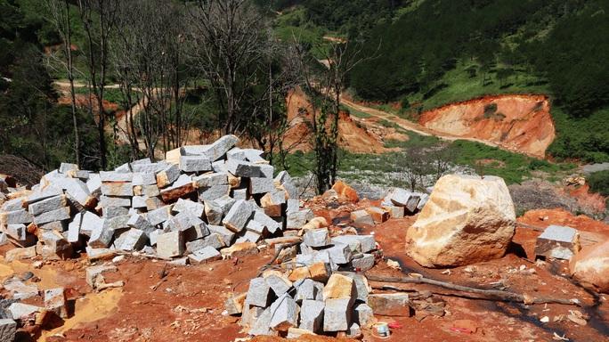 Núi rác Cam Ly Đà Lạt tiếp tục sạt lở, uy hiếp vườn người dân - Ảnh 9.