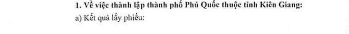 Hơn 96% cử tri đồng ý Phú Quốc trở thành TP đảo đầu tiên của Việt Nam - Ảnh 1.