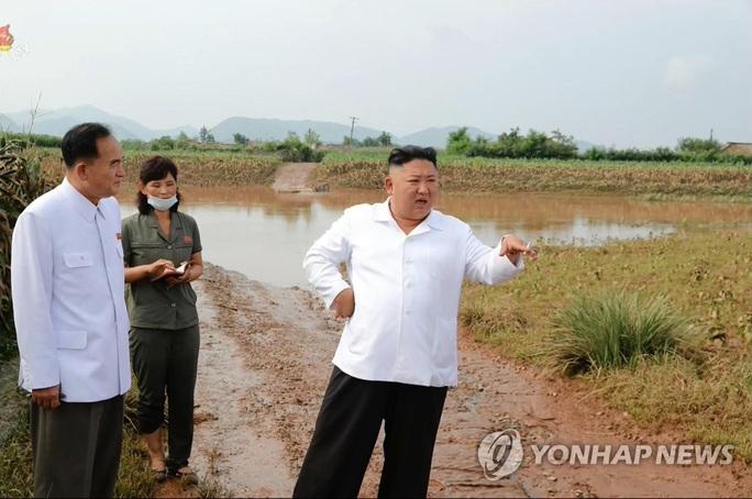 Ông Kim Jong-un mở kho đặc biệt, gửi yêu thương đến người dân - Ảnh 4.