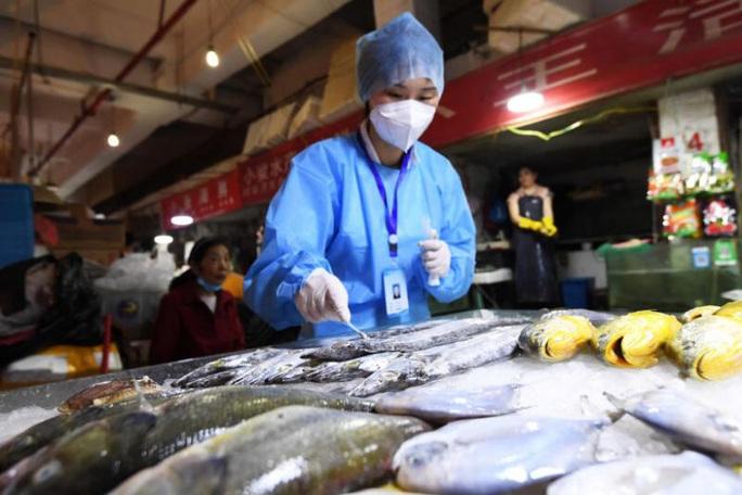 Covid-19: Trung Quốc nghi thực phẩm đông lạnh, chuyên gia quốc tế nói gì? - Ảnh 1.
