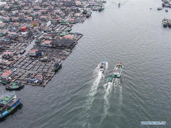 16.700 tàu cá Trung Quốc được cởi trói, sắp tràn xuống biển Đông - Ảnh 4.