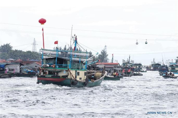 16.700 tàu cá Trung Quốc được cởi trói, sắp tràn xuống biển Đông - Ảnh 1.