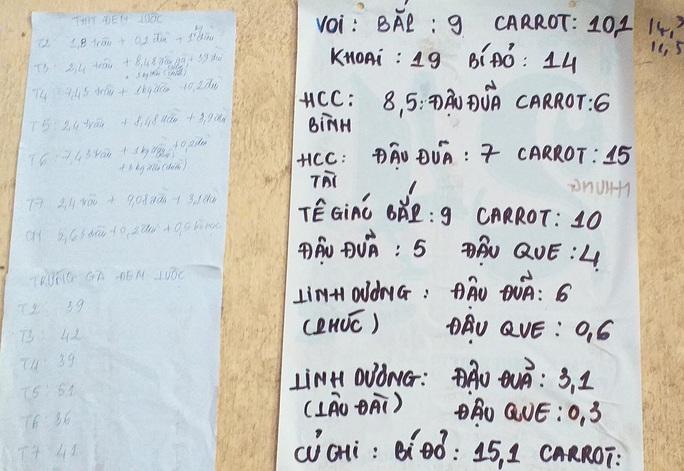 Cận cảnh hàng tấn rau, quả hỗ trợ thú ở Thảo Cầm Viên - Ảnh 8.