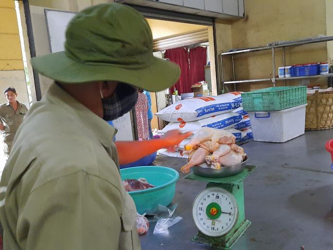 Cận cảnh hàng tấn rau, quả hỗ trợ thú ở Thảo Cầm Viên - Ảnh 4.