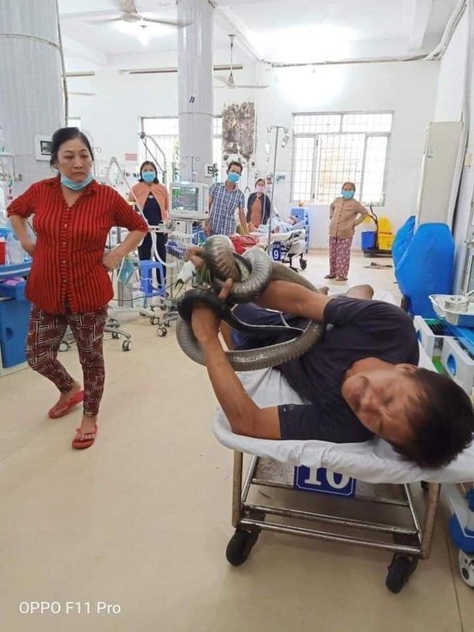 Người đàn ông cầm con rắn hổ mang chúa 4,5 kg vào bệnh viện  - Ảnh 2.