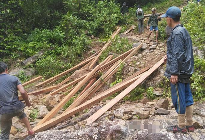 Lâm tặc ngang nhiên phá rừng phòng hộ, vận chuyển gỗ giữa ban ngày - Ảnh 1.