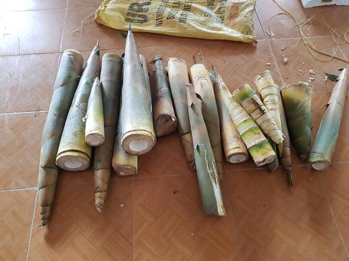 Rụng tim với những thức quà bà con huyện nghèo gửi xuống Đà Nẵng - Ảnh 15.