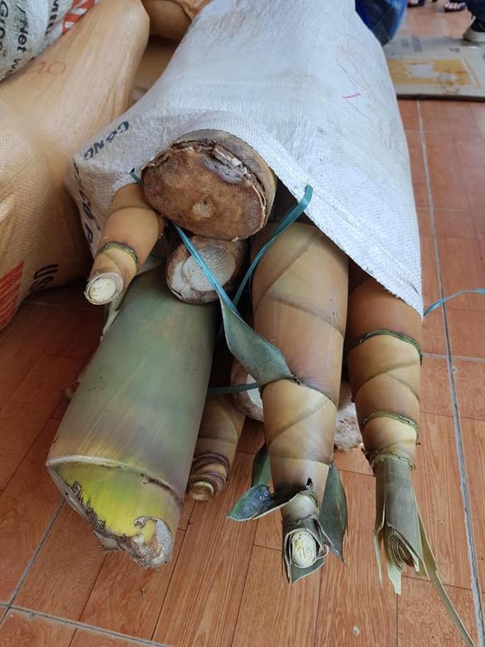 Rụng tim với những thức quà bà con huyện nghèo gửi xuống Đà Nẵng - Ảnh 11.