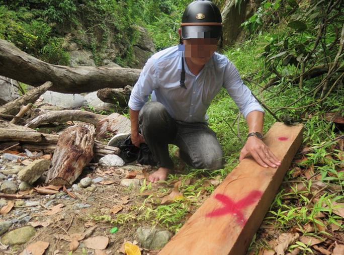 Lâm tặc ngang nhiên phá rừng phòng hộ, vận chuyển gỗ giữa ban ngày - Ảnh 3.