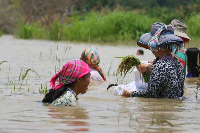 Dự án hồ thủy lợi ngàn tỉ gây nhiều hệ lụy - Ảnh 1.
