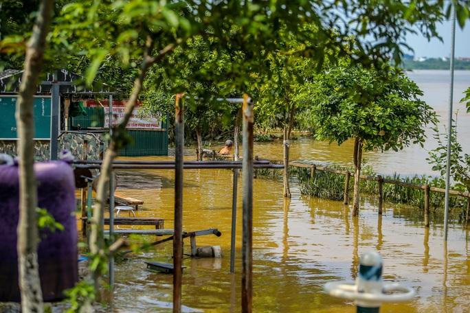 CLIP: Lạ lẫm bãi giữa sông Hồng những ngày nước ngập - Ảnh 12.