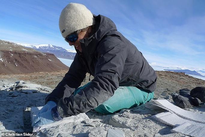 Choáng: heo lai khủng long khổng lồ thống trị Nam Cực 250 triệu năm trước - Ảnh 2.