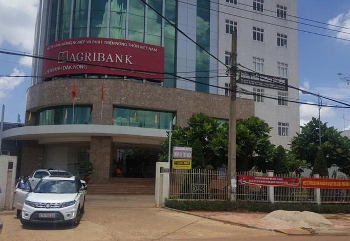 Agribank Đắk Nông đưa đoàn ra miền Trung... giao lưu thể thao - Ảnh 1.