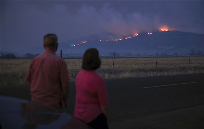 Cháy rừng lan đến nhà, bé trai tử vong bên cạnh chó cưng - Ảnh 1.