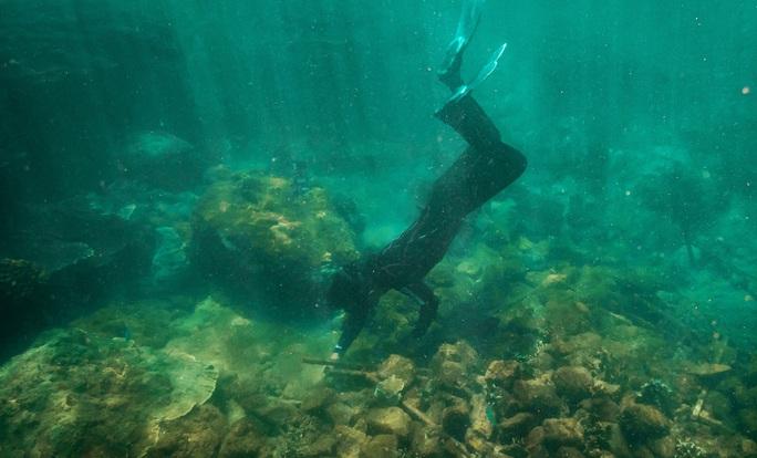Tình nguyện lặn biển trồng san hô - Ảnh 1.