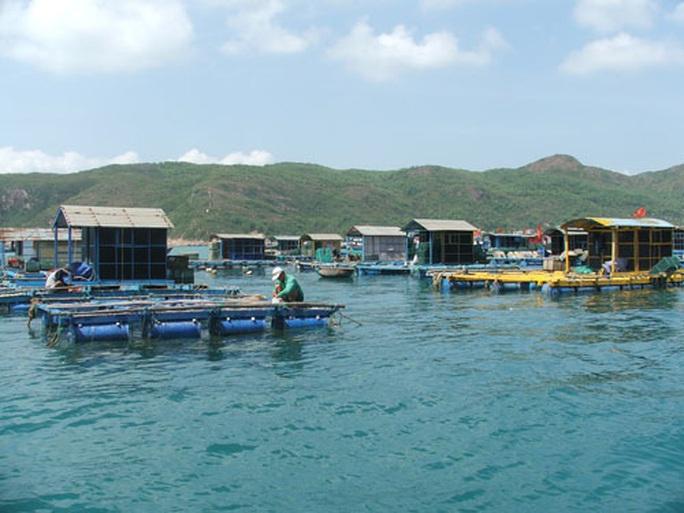 Nghề nuôi trồng thủy sản lao đao - Ảnh 1.