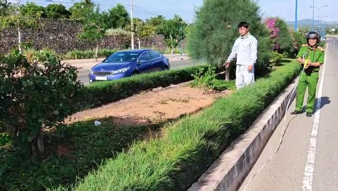 Cậu cháu rủ nhau trộm cây cảnh trên đường du lịch ven biển Mũi Né - Ảnh 1.