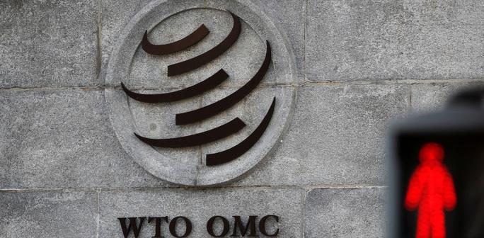 Ông Trump: WTO giúp Trung Quốc thoát tội, Mỹ không để yên - Ảnh 2.