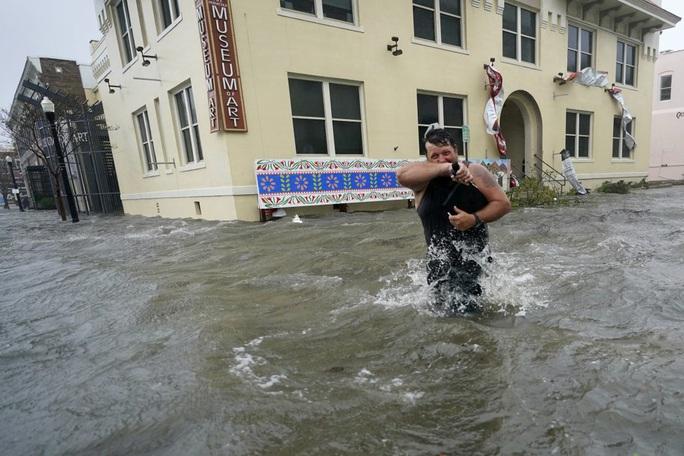 Cá sấu bơi lúc nhúc trên... đường phố ở Mỹ - Ảnh 6.
