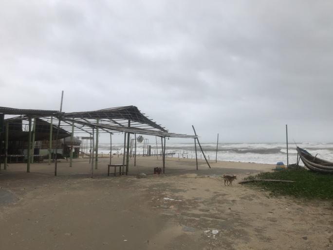 MiềnTrung: Cây ngã đổ, hàng chục ngôi nhà tốc mái trước khi bão số 5 đổ bộ - Ảnh 2.