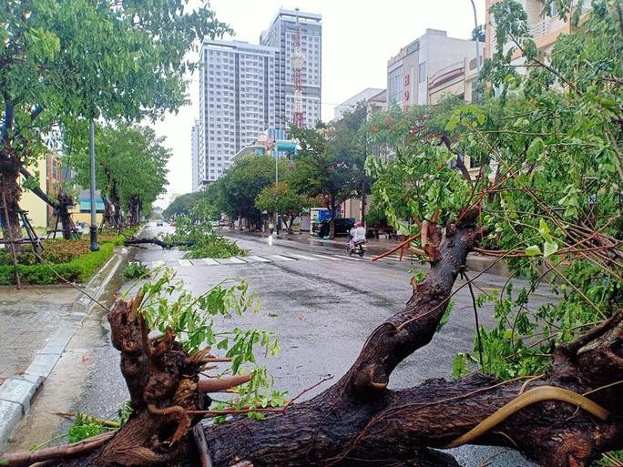 MiềnTrung: Cây ngã đổ, hàng chục ngôi nhà tốc mái trước khi bão số 5 đổ bộ - Ảnh 8.