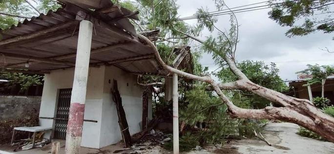 MiềnTrung: Cây ngã đổ, hàng chục ngôi nhà tốc mái trước khi bão số 5 đổ bộ - Ảnh 14.