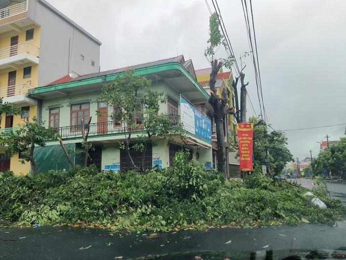 MiềnTrung: Cây ngã đổ, hàng chục ngôi nhà tốc mái trước khi bão số 5 đổ bộ - Ảnh 12.