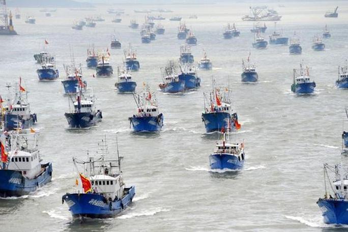 Tuần duyên Mỹ tuyên chiến với tàu cá Trung Quốc săn mồi - Ảnh 2.