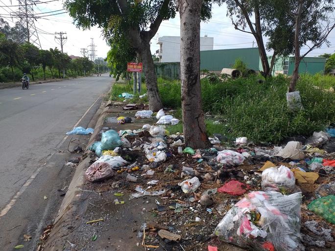 Gốc cây không phải là bãi rác - Ảnh 1.