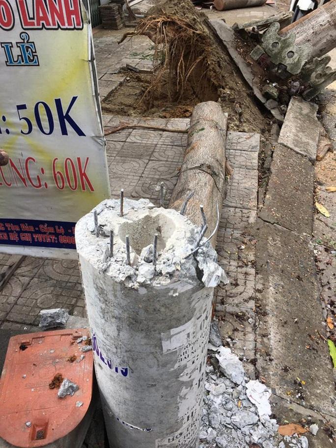 Hàng trăm cột điện gãy trong bão số 5: Do cây xanh ngã đè - Ảnh 1.