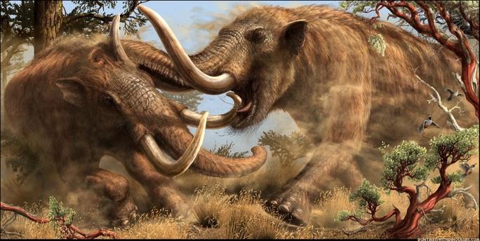 Dạo bờ sông, phát hiện tàn tích quái thú 10.000 tuổi - Ảnh 1.