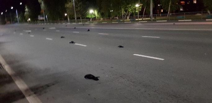 Nga: Cảnh tận thế ở thành phố hạt nhân  khi những con chim rơi xuống đường phố - Ảnh 1.