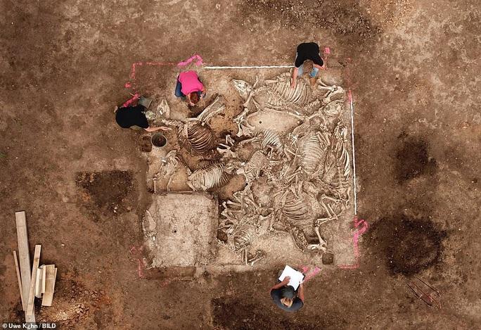 Xây trại gà, lộ ra mộ cổ rùng rợn của 6 người vợ hoàng tử - Ảnh 3.