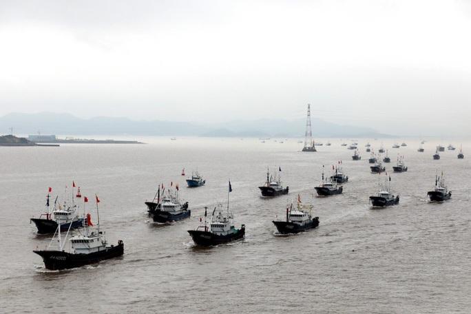 """Nhật Bản từ chối """"cành ô liu"""" của Trung Quốc ở Hoa Đông là có lý do - Ảnh 1."""