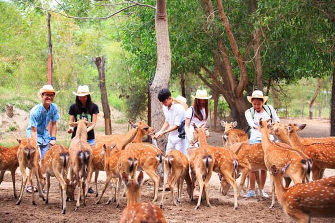Du lịch Nha Trang mở cửa lại - Ảnh 1.