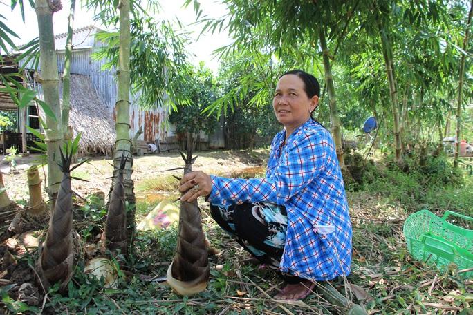 Thu lãi trăm triệu nhờ trồng loại cây bán không bỏ thứ gì - Ảnh 4.