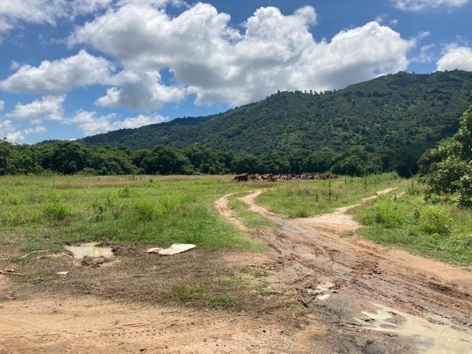 Đang tìm kiếm cháu bé 4 tuổi mất tích gần nhà ở vùng núi Chứa Chan - Ảnh 8.
