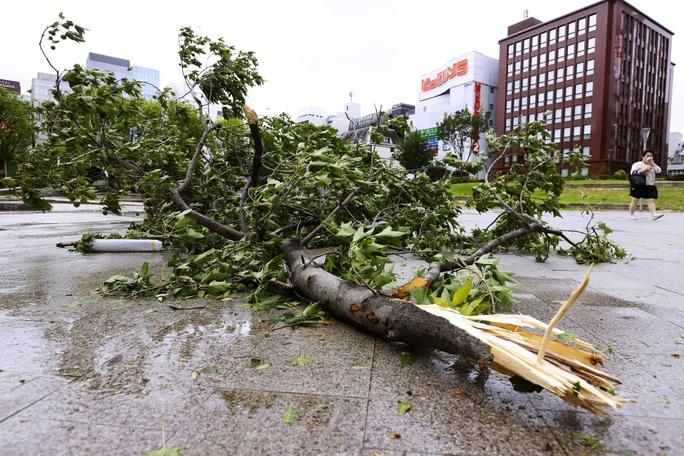 Nhật Bản: Đến nhà giám đốc trú bão Haishen, 2 thực tập sinh Việt Nam không may gặp nạn - Ảnh 4.