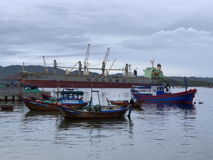 Công ty của ông Jonathan Hạnh Nguyễn tài trợ 5 triệu USD làm quy hoạch Vân Phong - Ảnh 2.