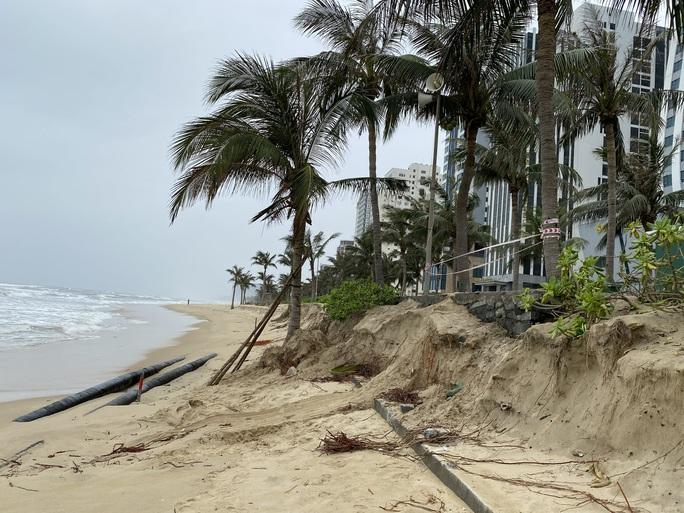 Nhiều khu vực trên bờ biển Đà Nẵng bị xói lở nặng - Ảnh 3.