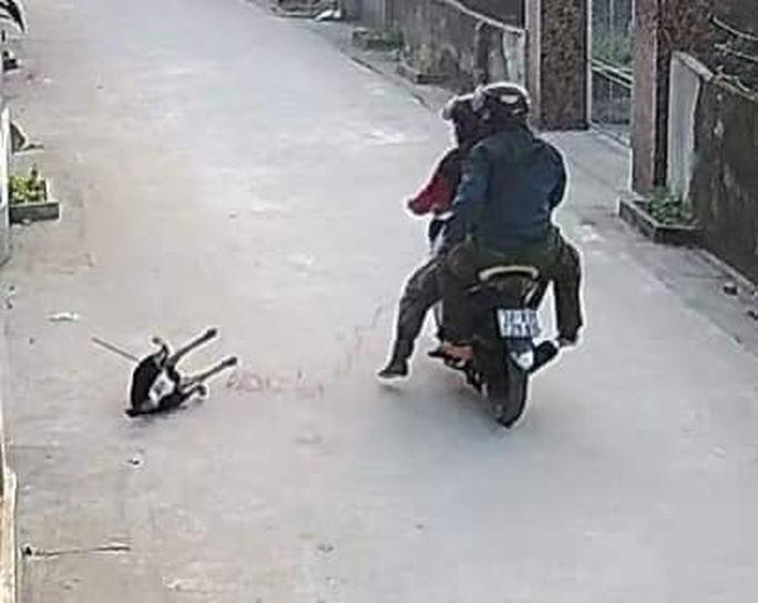 """CLIP: Người dân bất lực nhìn 2 thanh niên đi xe máy """"cướp chó"""" giữa ban ngày - Ảnh 2."""