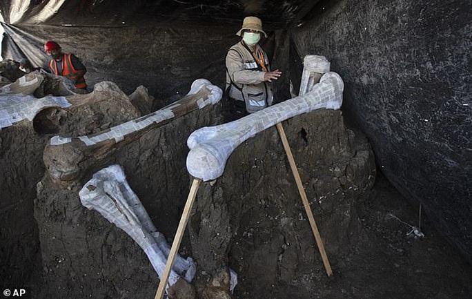 Những miền đất cứ đào đường, xây nhà là đụng độ quái thú, mộ cổ - Ảnh 1.