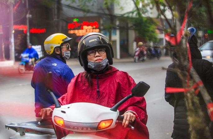 CLIP: Đào gắn tem Vân Hồ - Sơn La xuống phố có giá tới 30 triệu đồng - Ảnh 6.