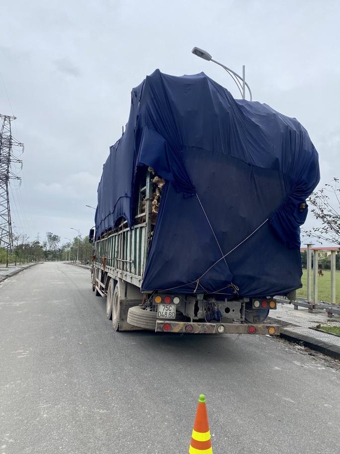 Cận Tết, hàng loạt xe chở quá tải bị phạt nặng - Ảnh 2.