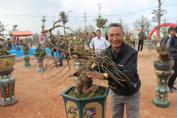 Mãn nhãn với hàng trăm tuyệt tác tại hội thi mai vàng ở Bình Định - Ảnh 1.