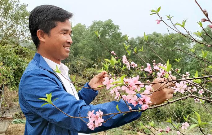 CLIP: Hoa đào nở thắm thủ phủ đào phai lớn nhất xứ Thanh - Ảnh 15.