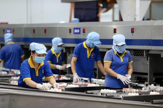 TP HCM cần 30.000 chỗ làm việc sau Tết nguyên đán - Ảnh 1.