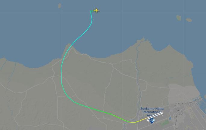 NÓNG: Máy bay Boeing 737-500 của hãng hàng không Indonesia rơi xuống biển? - Ảnh 1.