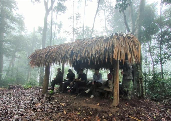 Ngắm rừng sa mu, pơ mu hơn 1.000 năm tuổi giữa đại ngàn - Ảnh 5.